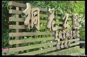 土城。桐花季:IMG_4342.jpg