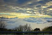阿里山。夕陽雲海:IMG_7269.jpg
