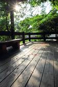 鳳凰花開。:IMG_9042.jpg
