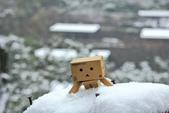雪。陽明山:IMG_7207.jpg