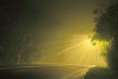 斜射光。:IMG_7300.jpg