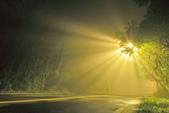 斜射光。:IMG_7303.jpg