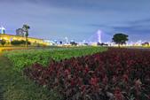 夜。幸福水漾公園:IMG_6138.jpg