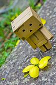 花。黃金雨。阿勃勒:IMG_4465.jpg