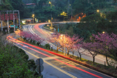 櫻。花園新城:IMG_7595.jpg