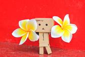 雞蛋花。:IMG_9478.jpg