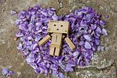 紫藤の恋。:IMG_3363.jpg