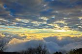 阿里山。夕陽雲海:IMG_7277.jpg