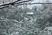 雪。陽明山:IMG_7232.jpg