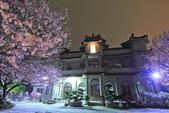 櫻。東方寺:IMG_8471.jpg