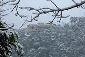 雪。陽明山:IMG_7245.jpg