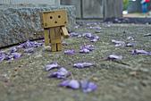 紫藤の恋。:IMG_3340.jpg