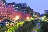 櫻。希望之河:IMG_8499.jpg