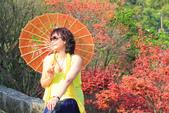 槭紅。:IMG_8714.jpg