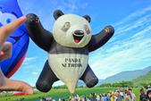 台東。熱氣球嘉年華:IMG_9431.jpg