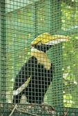 高雄。壽山動物園:IMG_0818.JPG