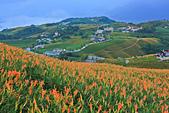六十石山の金針花季。:IMG_10524.jpg