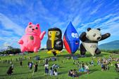 台東。熱氣球嘉年華:IMG_9438.jpg