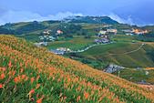 六十石山の金針花季。:IMG_10525.jpg