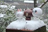 雪。陽明山:IMG_7213.jpg