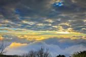 阿里山。夕陽雲海:IMG_7276.jpg
