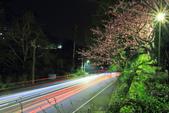 櫻。花園新城:IMG_7606.jpg