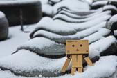 雪。陽明山:IMG_7179.jpg