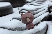 雪。陽明山:IMG_7181 (2).jpg