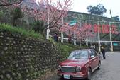 櫻。花園新城:IMG_7587.jpg