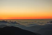 合歡山。雲海:IMG_1407.jpg