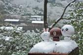 雪。陽明山:IMG_7208.jpg