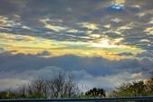 阿里山。夕陽雲海:IMG_7274.jpg