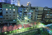 櫻。希望之河:IMG_8506.jpg