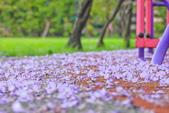 紫の浪漫。:IMG_8574.jpg