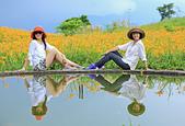 六十石山の金針花季。:IMG_10504.jpg