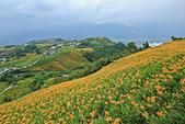 六十石山の金針花季。:IMG_10516.jpg