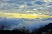 阿里山。夕陽雲海:IMG_7259.jpg