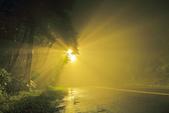 斜射光。:IMG_7306.jpg