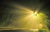 斜射光。:IMG_7312-2.jpg