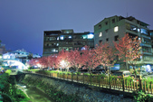 櫻。希望之河:IMG_8511.jpg