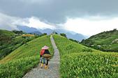 六十石山の金針花季。:IMG_10492.jpg