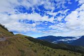 合歡山。雲海:IMG_1466.jpg