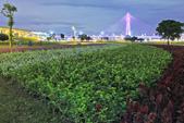 夜。幸福水漾公園:IMG_6140.jpg
