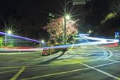 櫻。花園新城:IMG_7602.jpg