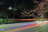櫻。花園新城:IMG_7608.jpg