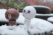 雪。陽明山:IMG_7187.jpg