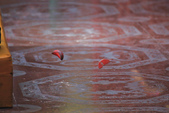 鳳山。天公廟:IMG_13041.jpg