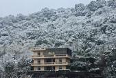 雪。陽明山:IMG_7253.jpg