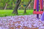 紫の浪漫。:IMG_8576.jpg