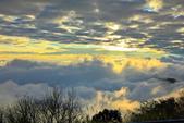 阿里山。夕陽雲海:IMG_7272.jpg